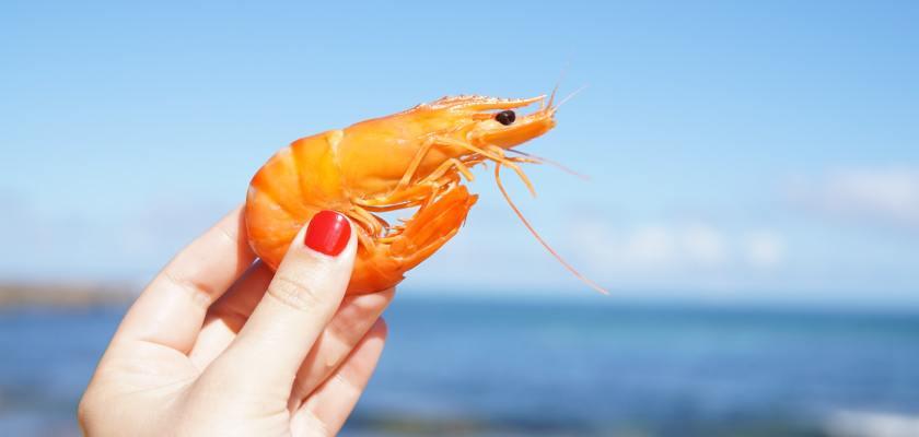 Avanti Frozen Shrimp Recall 2021 - Salmonella Contamination FDA