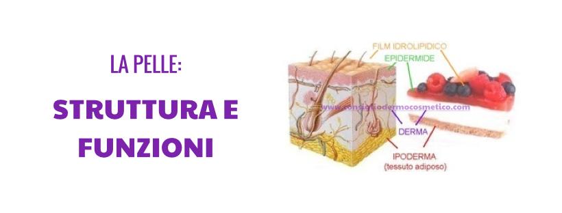 La pelle - struttura e funzioni