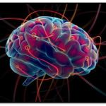 ¿Cuáles Son Las Etapas De La Memoria Humana?