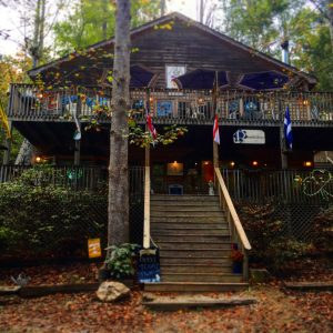 The Fox and the Parrot in Gatlinburg, Tennessee