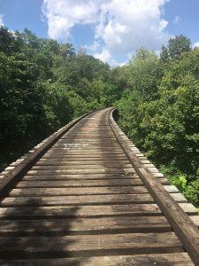 Ault Park Loop Trail