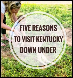 Five Reasons to Visit Kentucky Down Under