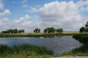 Lake located in the Rocky Mountain Arsenal