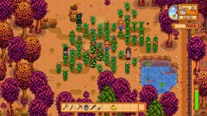 stardew-valley-estaciones