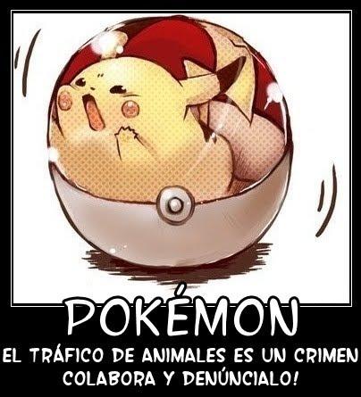Pokemon Chistes