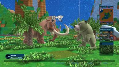 Birthdays the Beginning