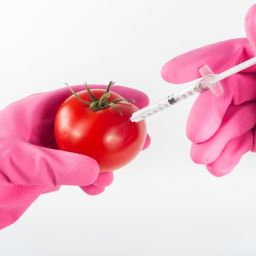 Une brève histoire de pesticide