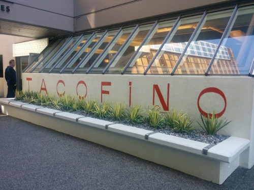 Tacofino Oasis