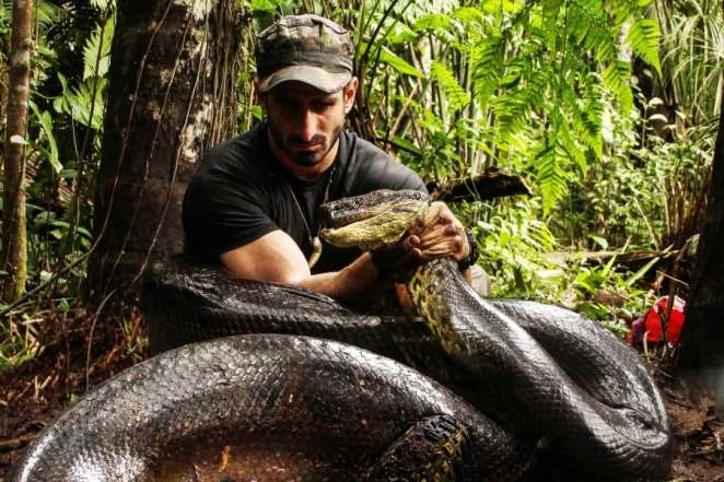 Poul Rosolie with the giant anaconda which will later attempt to eat him | Getty Image