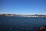 Wellington from the bay