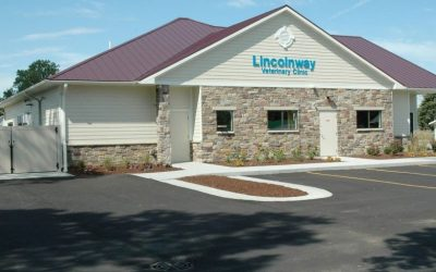 Lincolnway Veterinary Clinic