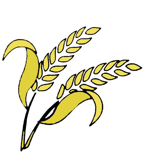 Consulente Agricolo