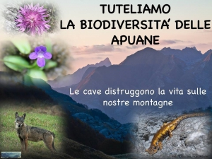 KL Cesec CV 2014.03.04 Petizione Apuane