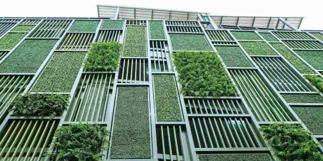 photo_LEED_sustainable_building_bâtiment_durable