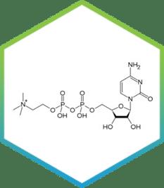 Cognizin/ citicoline