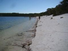 Beach erosion on Boorangoora's second beach reflects water level rises — 15/3/13