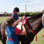 Terapia con caballos da mejor calidad de vida a niños con discapacidad