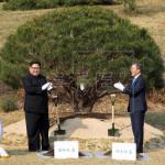 Moon logra mayor cota de popularidad en 11 meses tras su cumbre con Kim