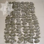 Le hallan 103 bolsas con mariguana
