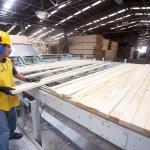 Crece el número de empleos en Durango