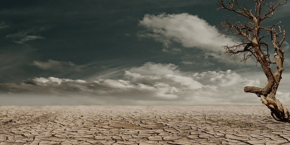 Sertão castigado pela seca.