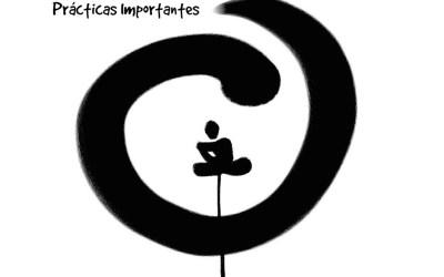 Las 5 prácticas más importantes