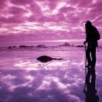 4 Steps To Advancing on the Spiritual Journey