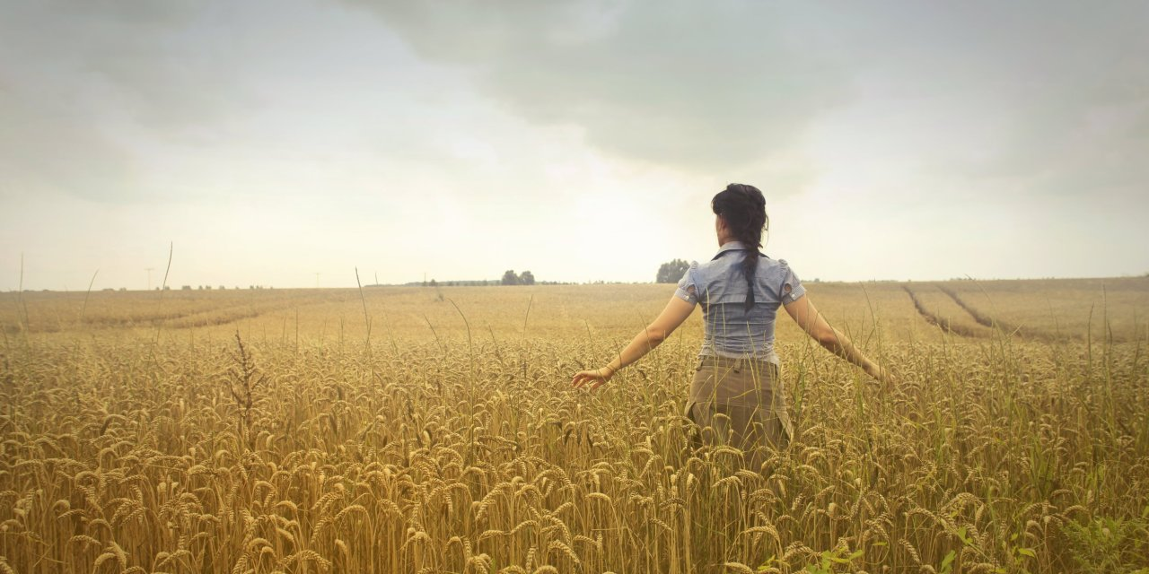 Of Mystics, Misfits, And A Farm