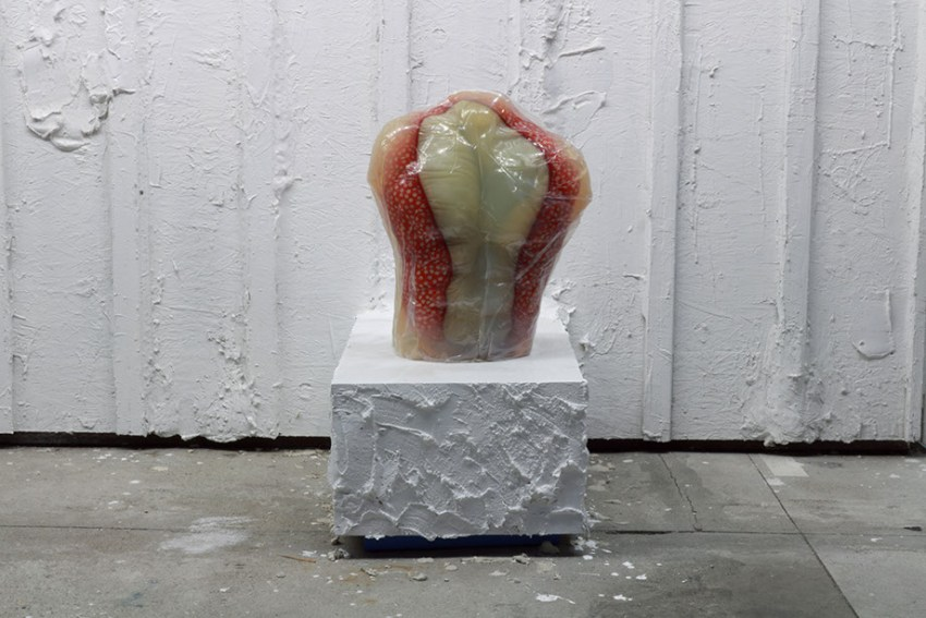 Kenneth Tam (2015). Image courtesy of Arturo Bandini.