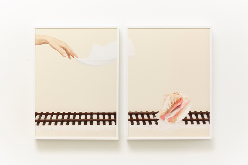 Juliana Paciulli, Uh-Huh (Conch Shell) (2016). Archival pigment print in artist's frame, 15.5 x 20.5 inches each (diptych) . Image courtesy of the artist and Greene Exhibitions.