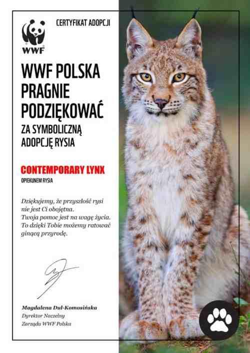 WWF Rys - Contemporary Lynx