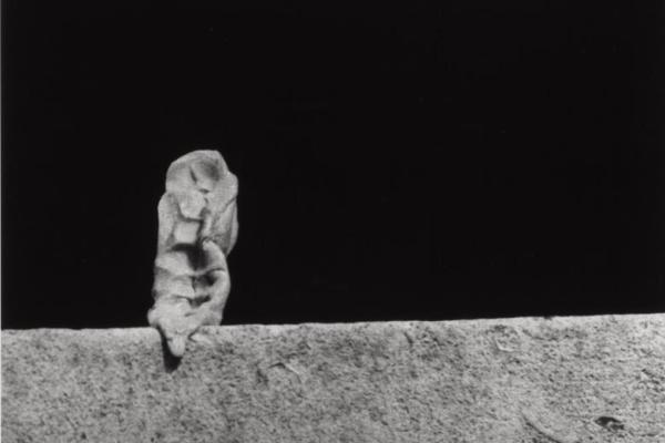 Alina Szapocznikow, Photosculptures, 1971-2007, Courtesy The Estate of Alina Szapocznikow / Piotr Stanislawski / Galerie Loevenbruck, Paris © ADAGP, Paris. Exhibition view, THEM, Schinkel Pavillon, 2015 Photo: Timo Ohler