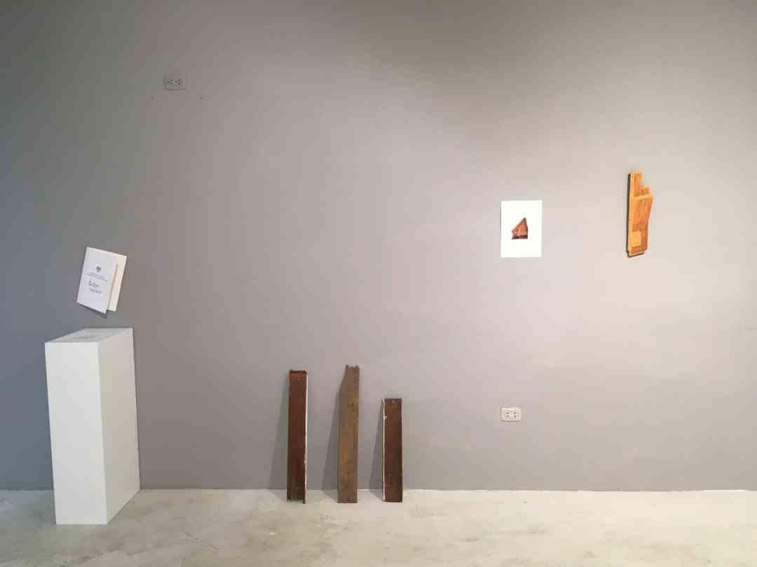 11603: Una Exposición en una Maleta, Janek Mioduszewski