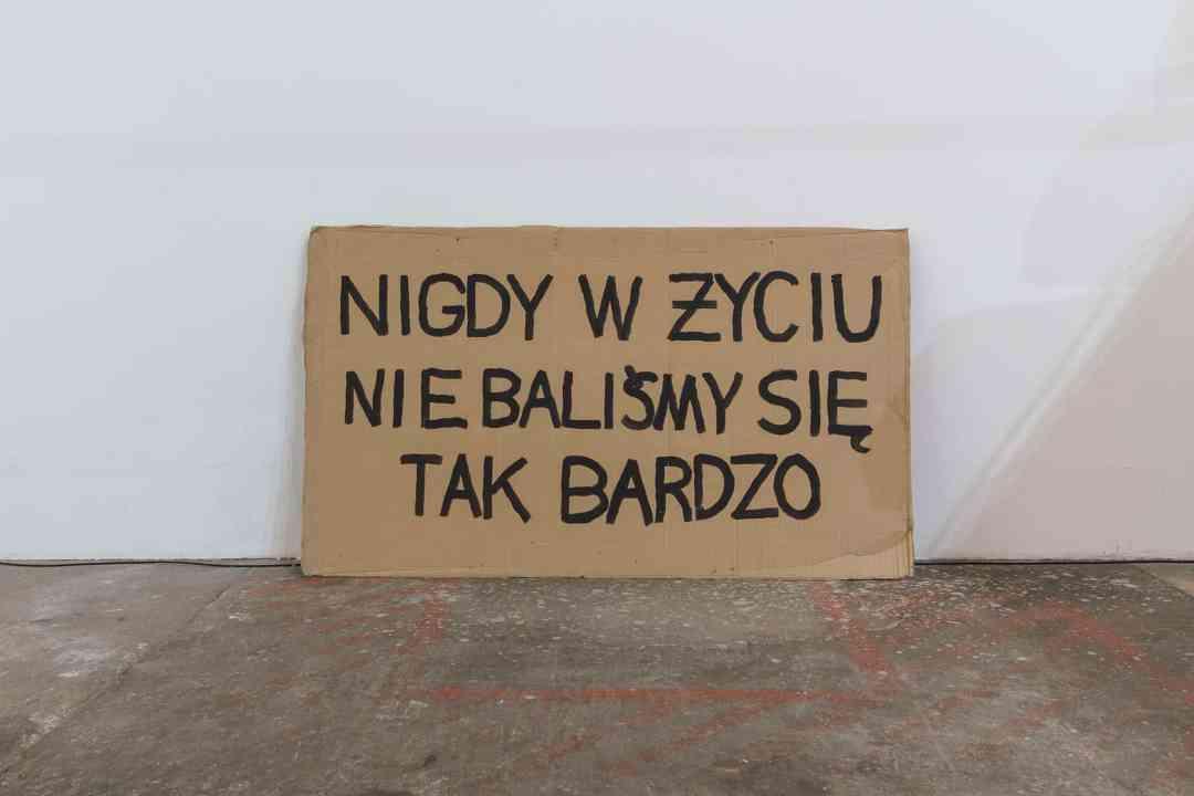 Paweł Żukowski, Never Have We Been This Frightened, from the 'Cartons' cycle, 2019, acryl on recycled cardboard, 147 cm x 85 cm, photo Maciej Zaniewski