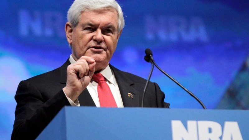 Newt Gingrich Uses The Paris Terror Attack To Promote Some NRA Talking Points