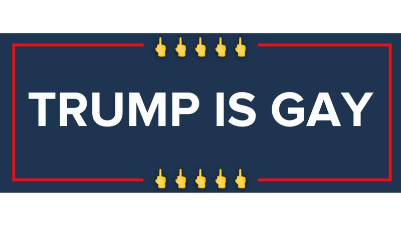 'Donald Trump Is Gay': New Website Mocks 'Bigot' President-Elect