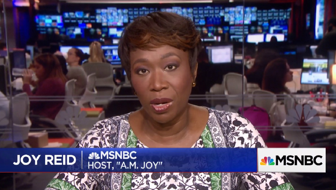 Joy Reid's Cyber-Security Expert: 'Significant Evidence' Her Old Blog Was 'Compromised'