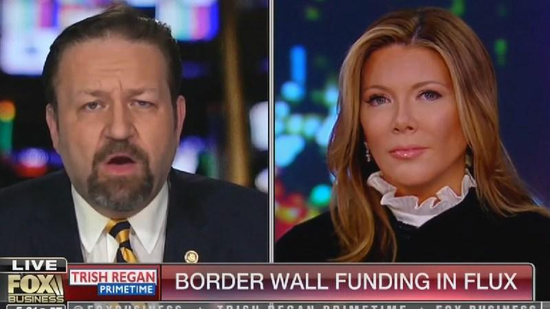 Fox's Sebastian Gorka: The Democratic Party Has 'Become Fundamentally Un-American'