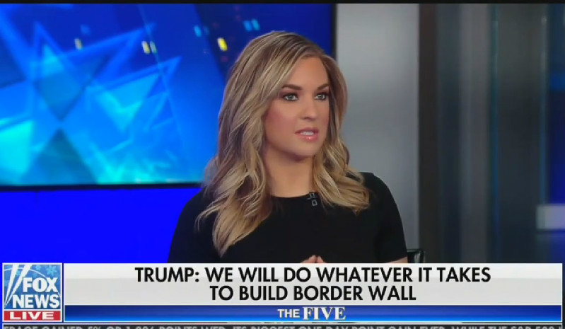 Fox Host: 8-Year-Old Died Because He Showed Up Sick And Border Patrol Finally Gave Him Medical Care