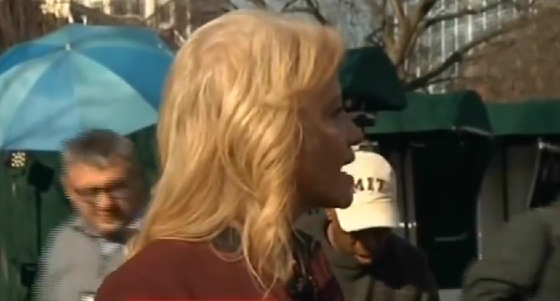 Kellyanne Conway Lashes Out At CNN's Jim Acosta: You're A 'Smart-Ass' Who No One Likes