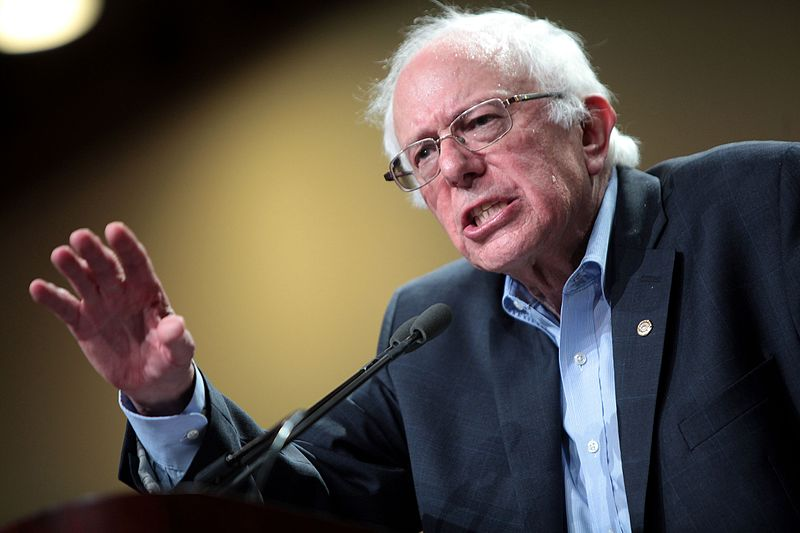 Bernie Sanders Is A Leading Democratic Contender And Criticism Is Mounting