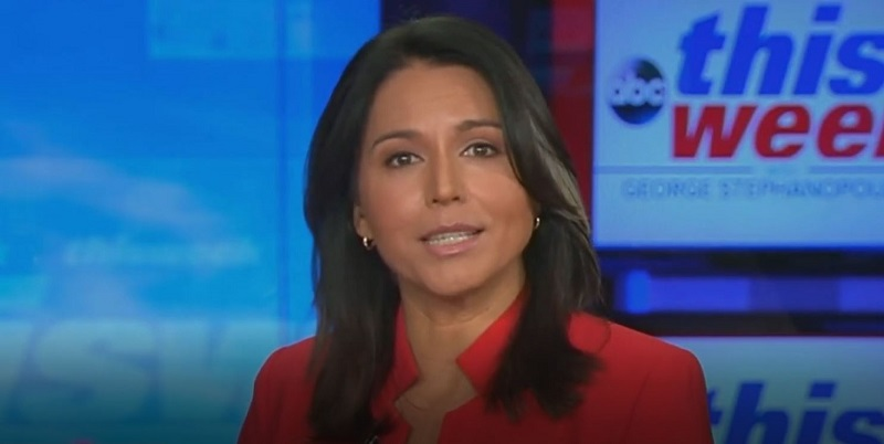 Tulsi Gabbard Claims Story of Putin Apologists Supporting Her Is 'Fake News'