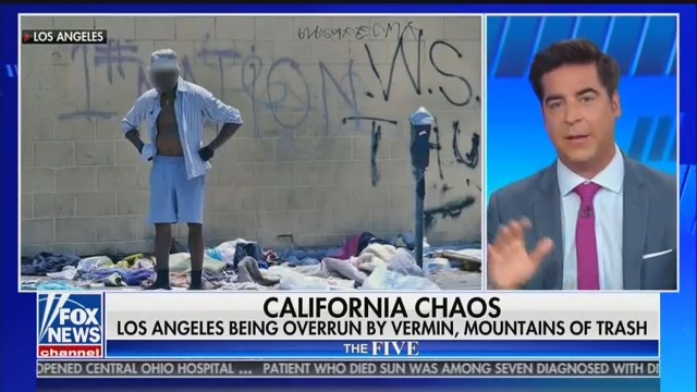 Fox's Jesse Watters: Only 'Solution' to Homelessness Is 'Bulldoze' Area, 'Institutionalize' Everyone