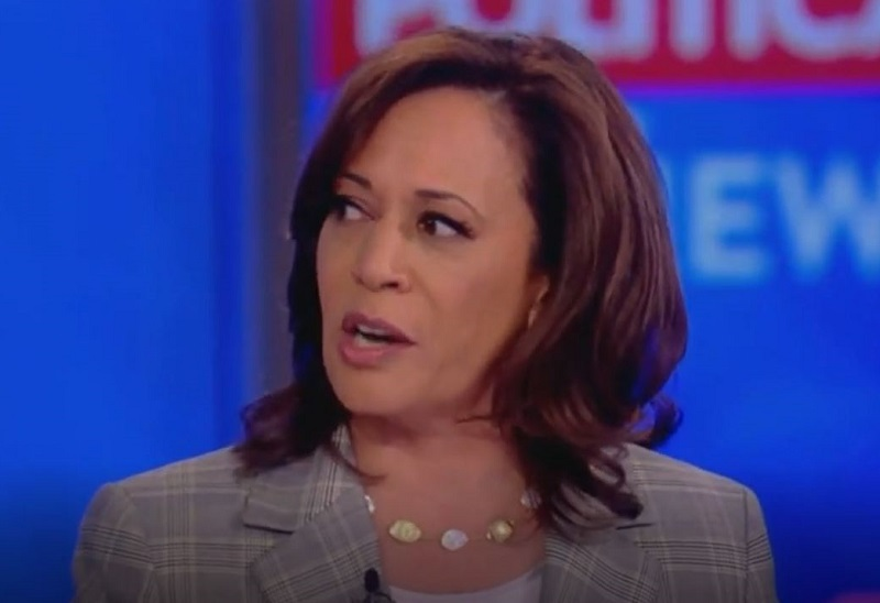 Kamala Harris Brushes Off Meghan McCain's Attempt to Run Interference for Joe Biden on 'The View'