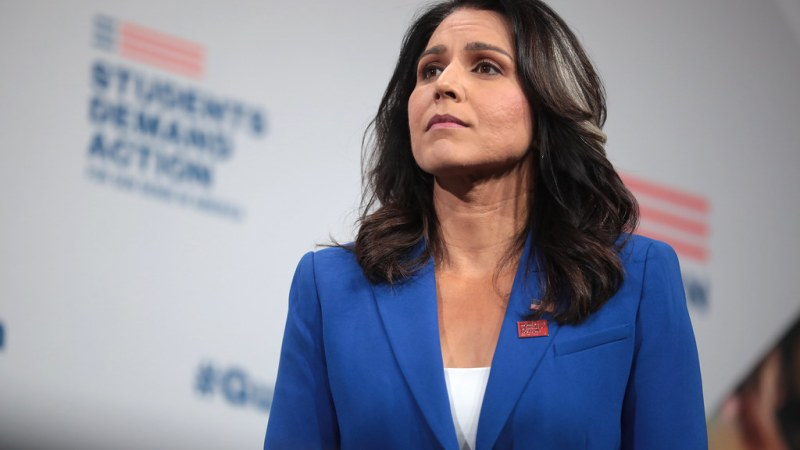'The Federalist' Publisher Ben Domenech Donated to Tulsi Gabbard's Campaign This Summer