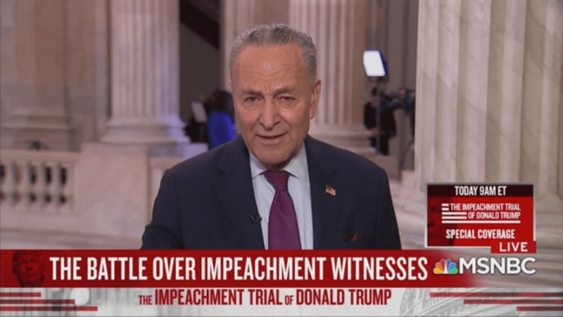 Chuck Schumer Challenges Republicans to Call Hunter Biden: 'You Know Why They Don't?'