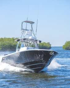 contender  fisharound