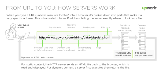 from URL to You: How servers work