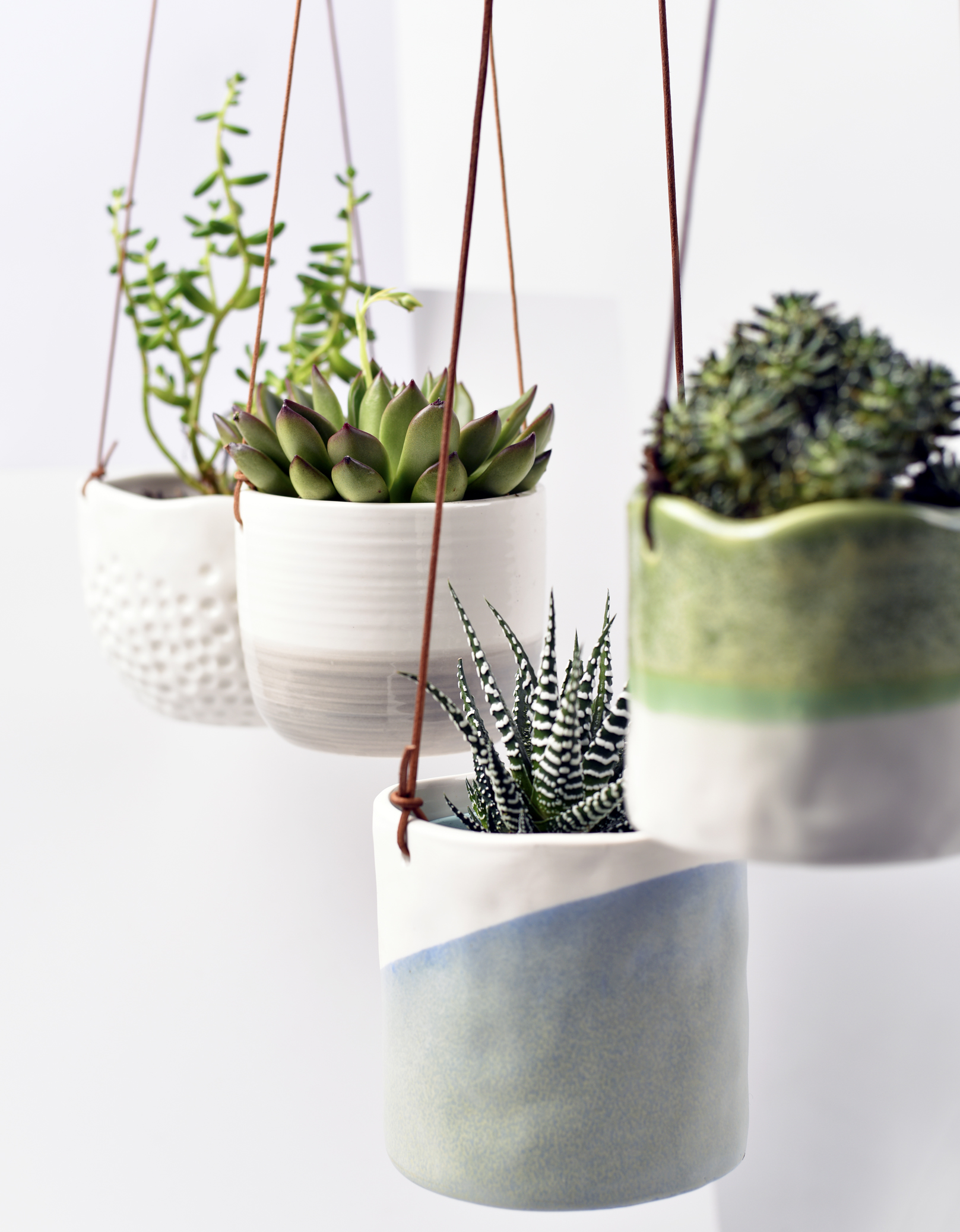 10 gardening trends set to blossom in 2018 - TV3 Xposé on Hanging Plant Pots Indoor  id=13884