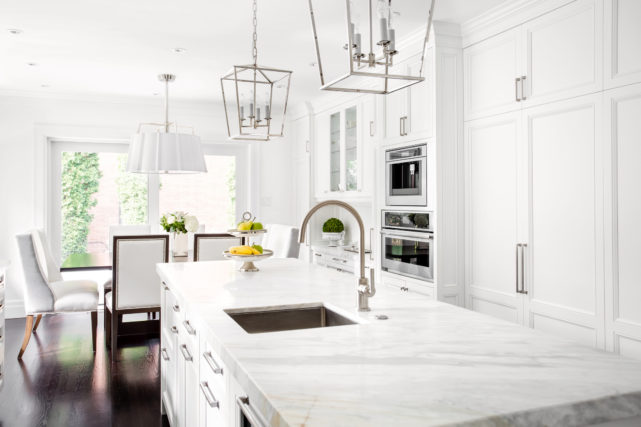 stark white kitchen with greenery